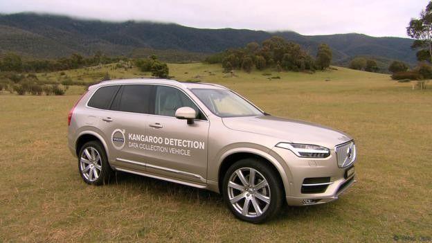 Kangaroo detection data collection vehicle