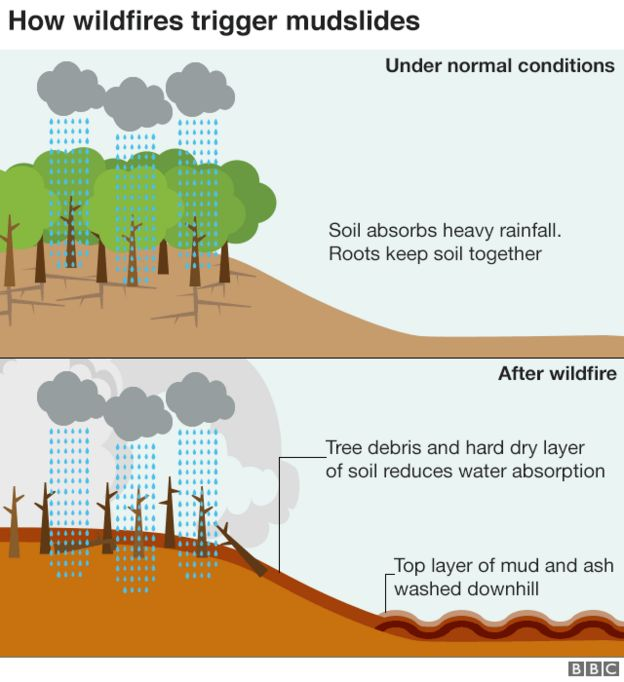 infographic how wildfires trigger mudslides courtesy BBC