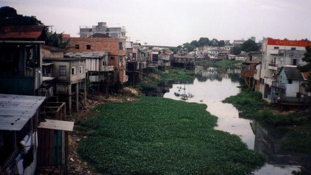 Esgoto e lixo em meio a favela em Manaus