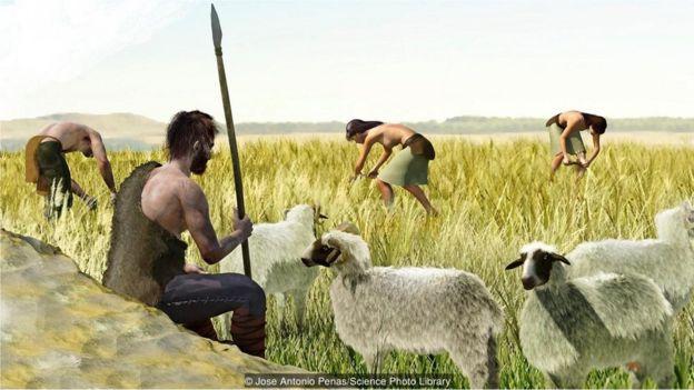 insanın tarıma başlaması