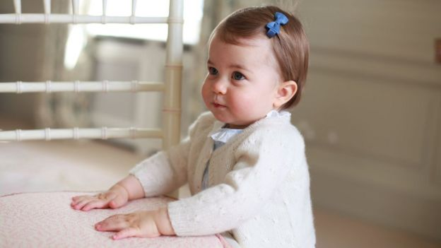 Princess Charlotte photographed for her first birthday