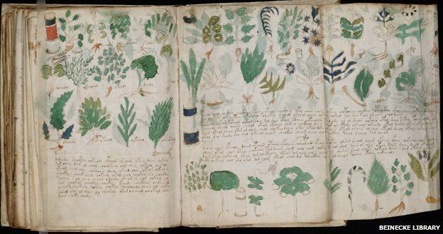 http://ichef-1.bbci.co.uk/news/624/media/images/68289000/jpg/_68289512_new_3voynich_manuscript_(178).jpg