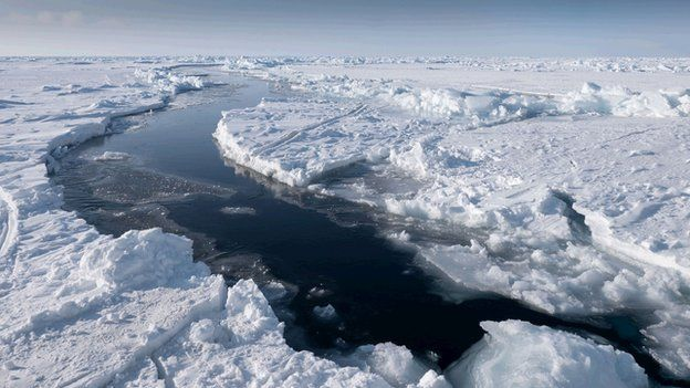 The Arctic: Ocean of Ice