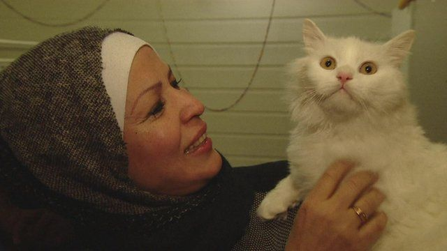 Kunkush the cat reunited with his owner