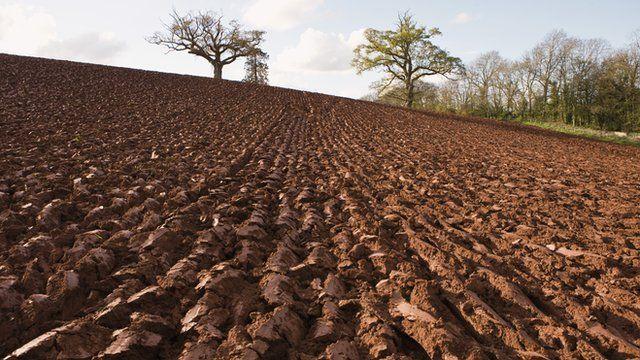 Scotland 39 s passionate politics of soil bbc news for Soil uk tour 2016