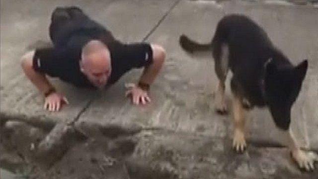 PC Steve Hopwood and his canine team mate