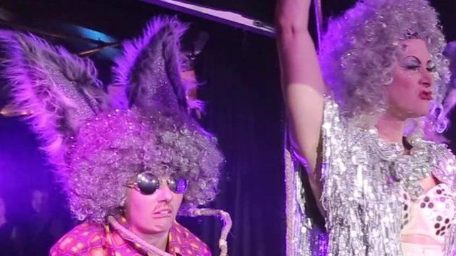 The Donkey Show : A Midsummer Night's Disco
