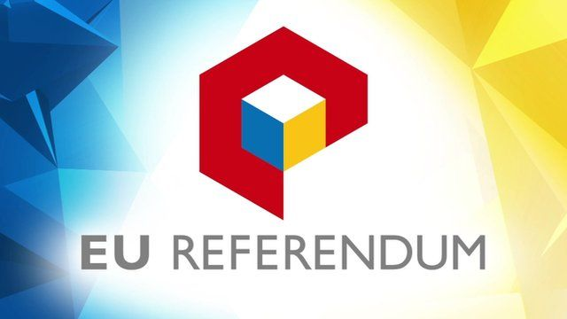 EU referendum logo