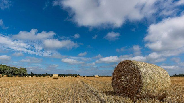 Cumulus cloud and blue skies over a harvested field in Garforth, Leeds. There is a large hay bale in the foreground. Picture taken by BBC Weather Watcher gerrywatch