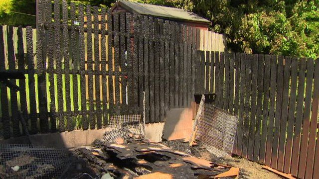 The fire started in a pigeon loft and spread to the family's home