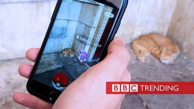 Pokemon Go player and a cat
