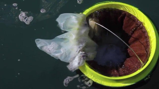 The sea bin