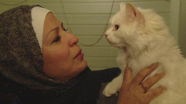 Kunkush the cat