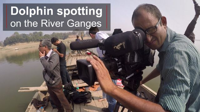 Dolphin spotting on the River Ganges