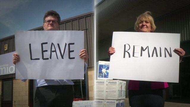 Leave and remain voters