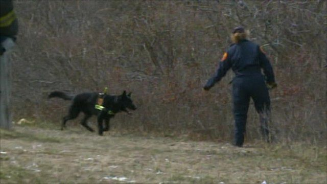 Police search Long Island brush