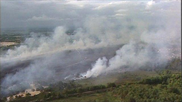 Dorset heathland fire