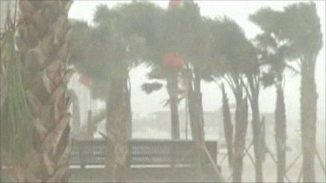 Trees being blown by storm winds