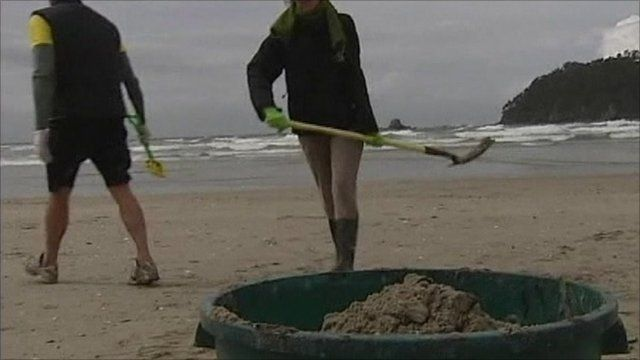 People cleaning up beach