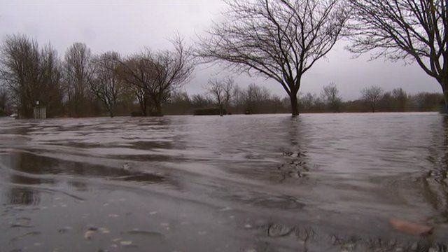 Trees surrounded by floods