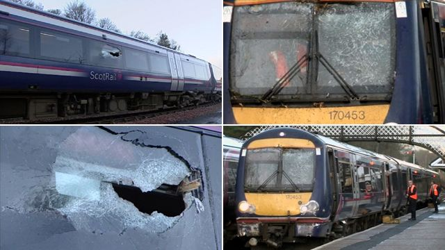 Train damaged by a tree