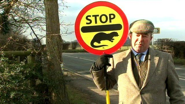 Man holding 'Stop' sign for otters