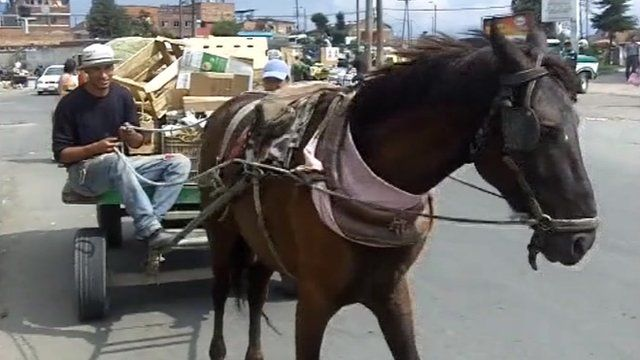 A horse-drawn cart being driven