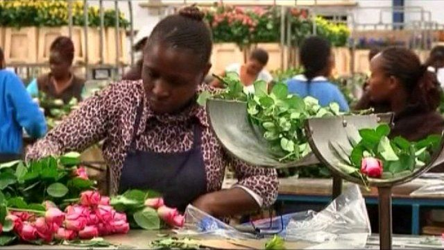 Kenyan flower-growers