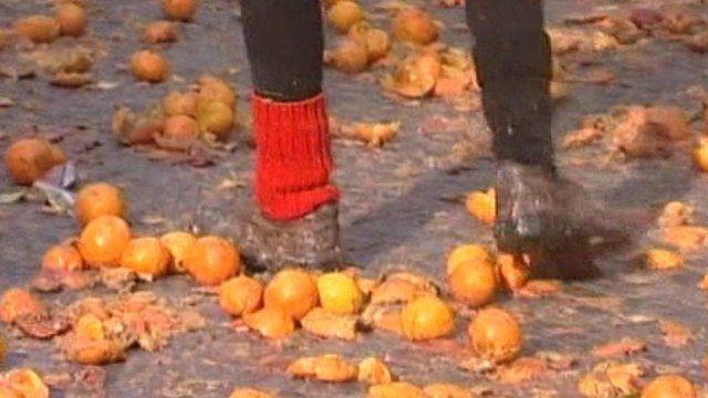 Squashed oranges