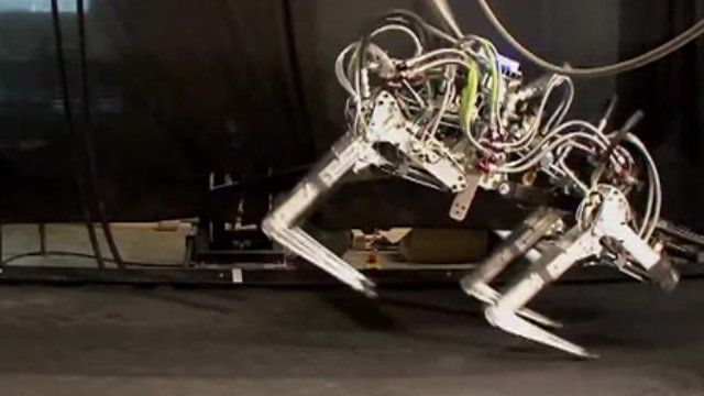 The 'Cheetah' robot