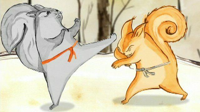 Taekwondo squirrels