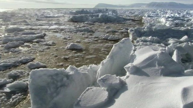 Chunks of ice floating past an ice sheet