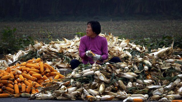 A woman sits on a pile of corn as she removes husks on a road near Beijing