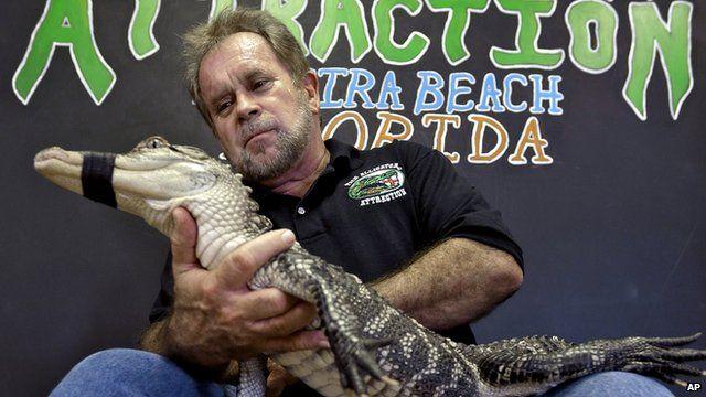 Bob Barrett with an alligator