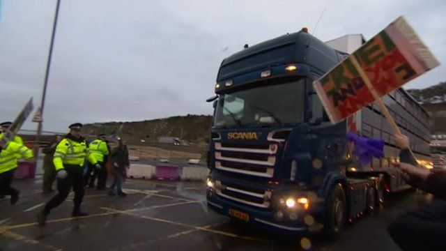 Protesters against live animal exports at the Port of Ramsgate