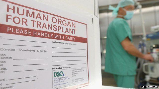 Organ transplant container