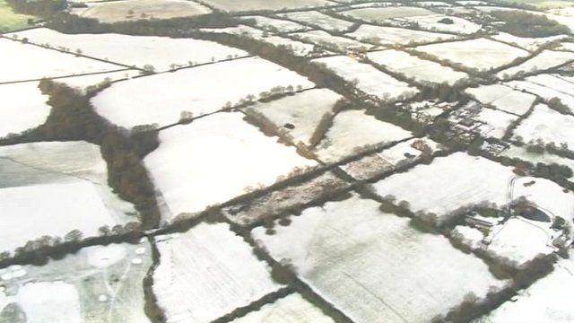 Snowy fields in Hertfordshire