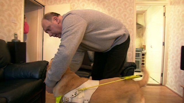 Tony Averis and his guide dog