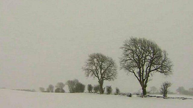 Snowbound landscape