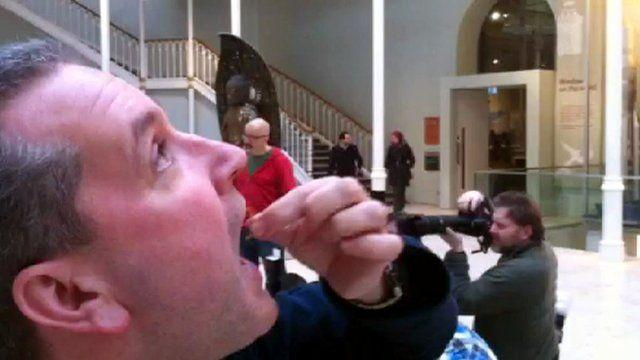 Alan eats a mealworm