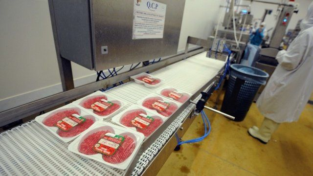 A French food industry employee working on the production chain of beef steaks.