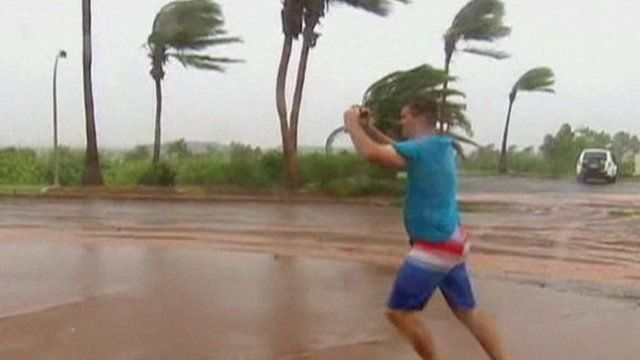 Man and trees in strong winds