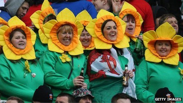 Rugby fans