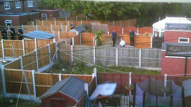 Clifford Clarke's garden