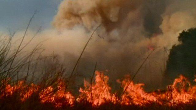 Wildfires in Santa Barbara County