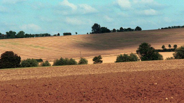 A view of English farmland