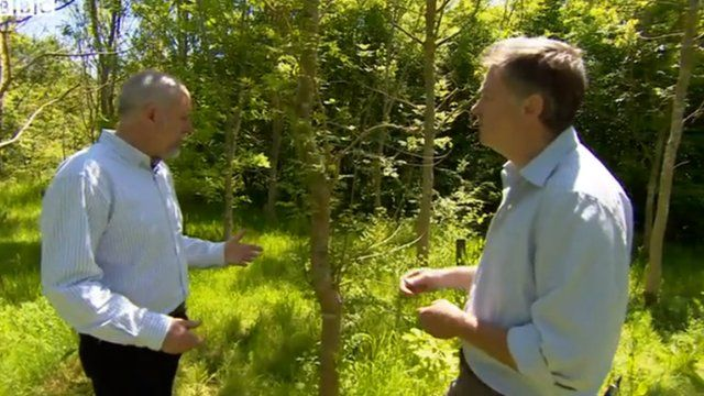 Jeremy Cooke speaks to Austin Brady from the Woodland Trust at Pound Farm in Suffolk
