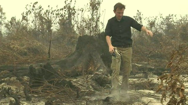 The BBC's Rupert Wingfield-Hayes balances on a log in the middle of a hot peat bog