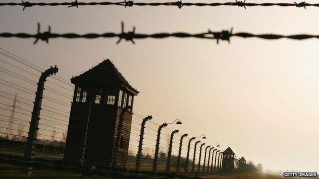 Auschwitz camp fence