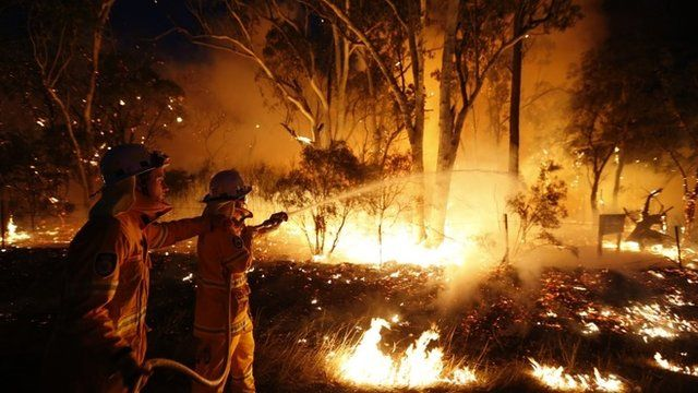 Firefighters attempt to extinguish a bushfire at the Windsor Downs Nature Reserve near Sydney